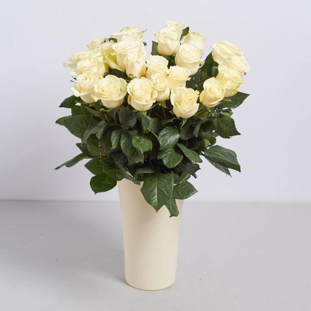 """Голландская роза """"Мондиаль"""""""